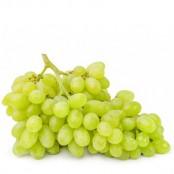 Raisin Vert Import