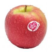 Pomme Pink Lady